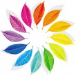 Royalty-Free Stock Vector Image: Color wheel
