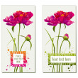 Set of flower greeting cards — Stock Vector