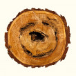 Smile-shaped log of wood. — Stock Photo