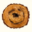 Smile-shaped log of wood. - Stock Photo