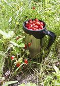 Mug with strawberries — Stock Photo