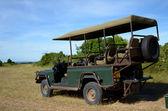 Transport de savannah — Photo