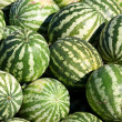 Stock Photo: Water-melons