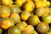 Meloenen — Stockfoto