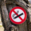 """""""It is forbidden to smoke a sign"""" — Stock Photo"""