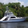 Sportfishing Boat - Stock Photo