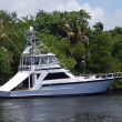 Sportfishing Boat — Stock Photo #5841826