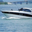 Постер, плакат: Sleek Black and White Cabin Cruiser