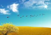Yellow tree and birds — Stock Photo