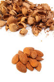 Almond kernels with hulls — Stock Photo