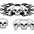 Skulls tattoo — Stock Vector #5383482