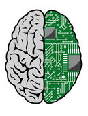 Brain and motherboard — Stock Vector