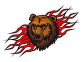 Wild bear mascot — Stock Vector