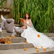Stock Photo: Bride and groom reed orange book