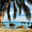 Stock Photo: Tropical beach, Thailand