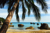 Tropical beach, Thailand — Foto Stock
