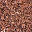 Stock Photo: Red soil