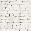 A white brick wall — Stock Photo #5626659