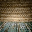 Old room with brick wall — Stock Photo #5635577