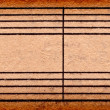 Empty music notes on old paper sheet, to use for the background — Stockfoto