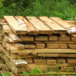 Stockfoto: Pattern of cut wood stacks in rectangular formation with green g