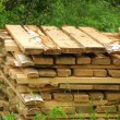 Foto de Stock  : Pattern of cut wood stacks in rectangular formation with green g
