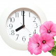 Wall clock — Stock Photo #6352940