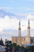 Selimiye Mosque opposite blue sky — Stock Photo
