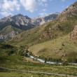 Kyrgyzstan. Mountains. Gorge Besh Tash. — Stock Photo