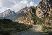 Kyrgyzstan. Mountains. Gorge Besh Tash. — Stock Photo