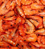 Delicious shrimps — Stock Photo