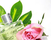 Parfum dans un flacon de verre — Photo