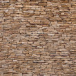 Stone wall — Stock Photo #6077073