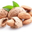 Stock Photo: Group of almond nuts.