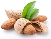 Group of almond nuts. — Stockfoto