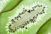 Back projected kiwi slice. — Foto Stock