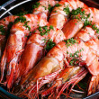 Boiled shrimp - Foto de Stock