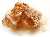 Honeycombs. — Stock Photo