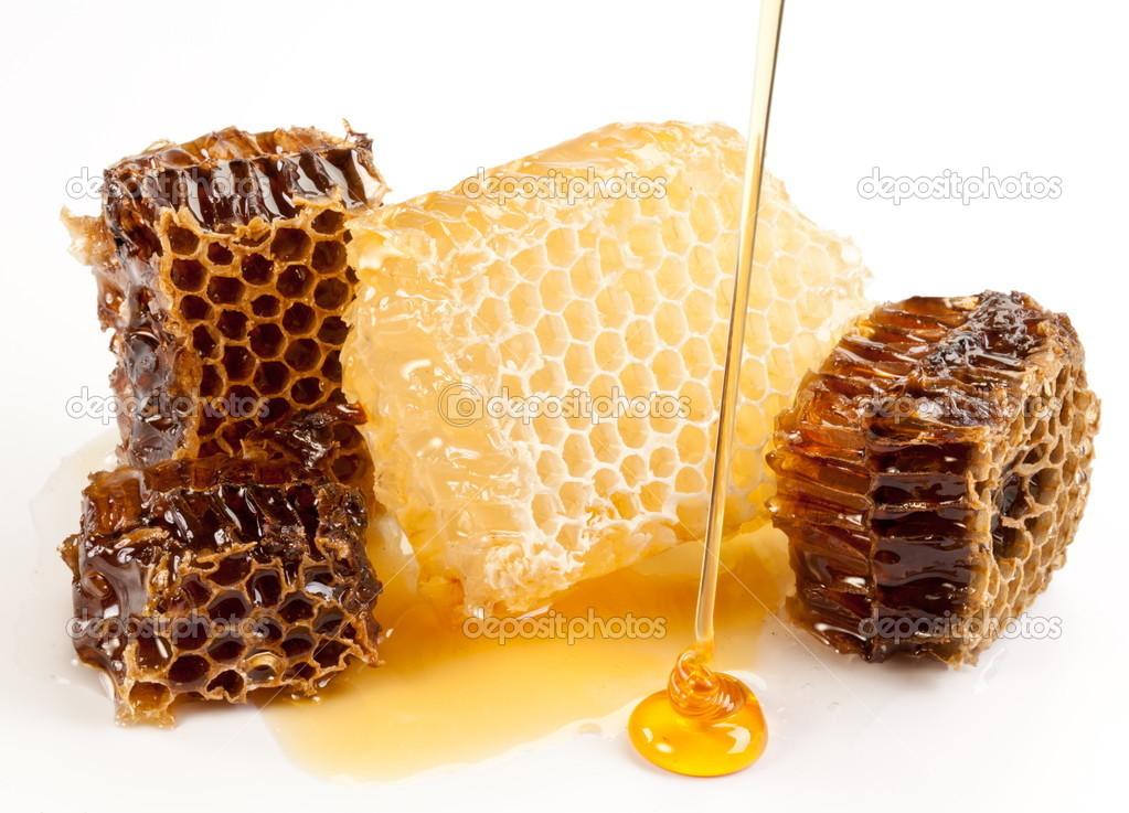 Close up view of honeycombs. — Stock Photo #6039407