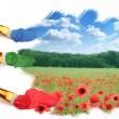 Three brushes paint a beautiful landscape with poppies. - Stock Photo