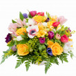 Spring flower assortment - Stock Photo