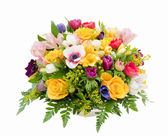 Spring flower assortment — Stock Photo