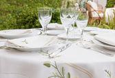 Table arangement for garden banquet — Stock Photo