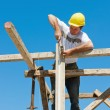 Construction worker on scaffold — Stockfoto #5594008
