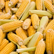 Fresh Organic Ripe Corns At A Street Market — Stock Photo