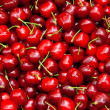 Fresh Organic Red Cherries — Stock Photo