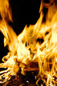 Fire on a black — Stock Photo