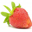 Strawberry - Foto Stock
