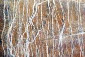 Mramorový vzor — Stock fotografie
