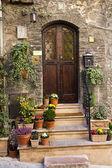 Front Door Color — Stock Photo